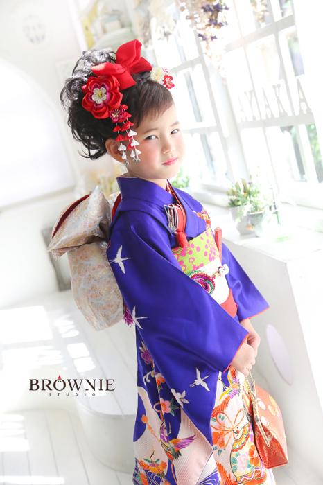 brownie_151025b_008 のコピー