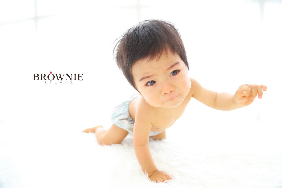 brownie_151115b_071 のコピー