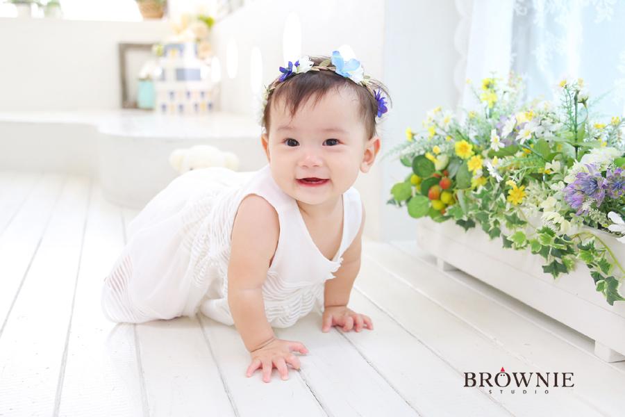 brownie_161001c_44-%e3%81%ae%e3%82%b3%e3%83%94%e3%83%bc